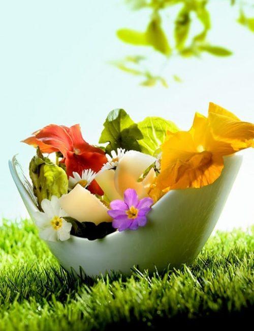salade de fleurs au Beaufort illustration film stylisme culinaire recette food style rhone lyon packaging pack